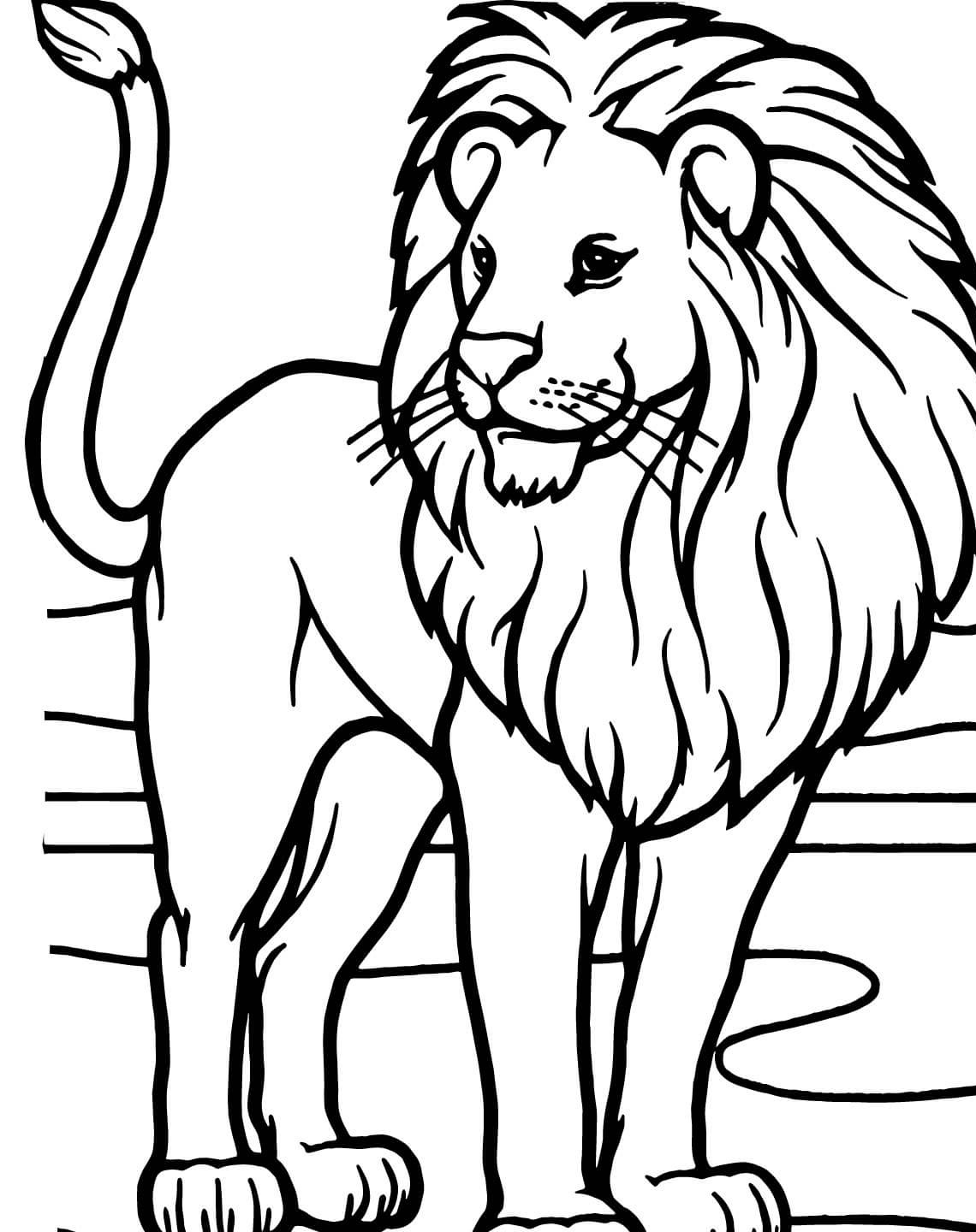 Male African Lion Coloring Online