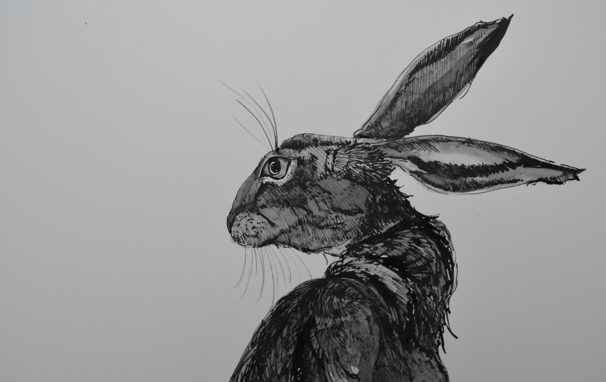"... Hare"" in a draw, to find out more just visit her blog and The House"