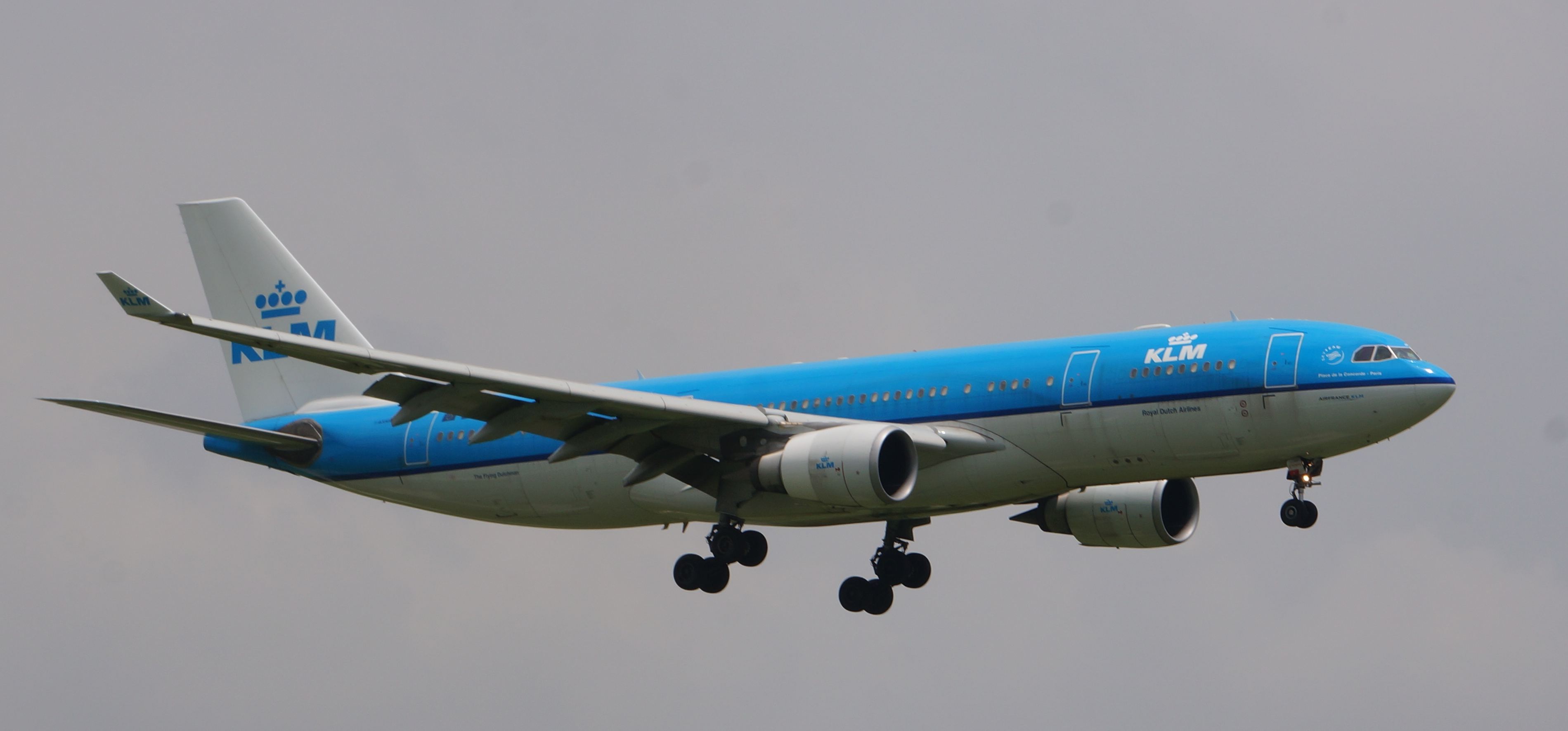 KLM began service at D/FW Airport in 2008. In recent years, its ...