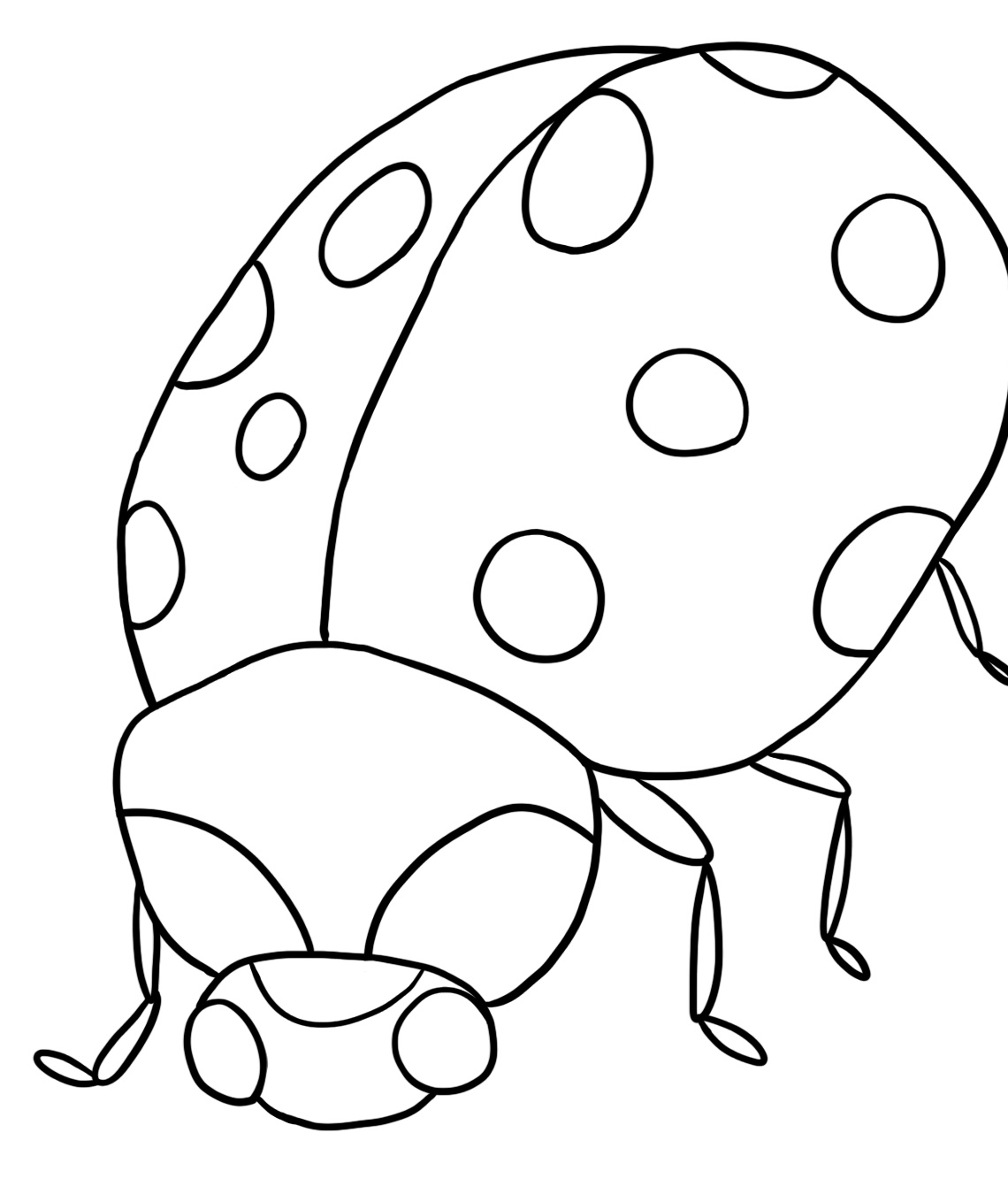ladybug pictures for kids