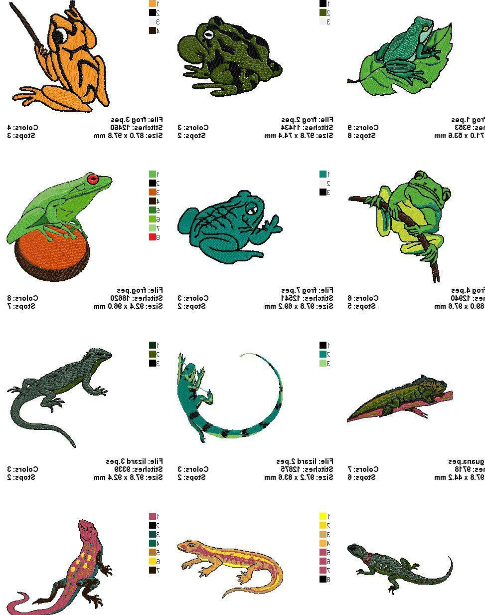 Amphibians Chart | www.pixshark.com - Images Galleries ...