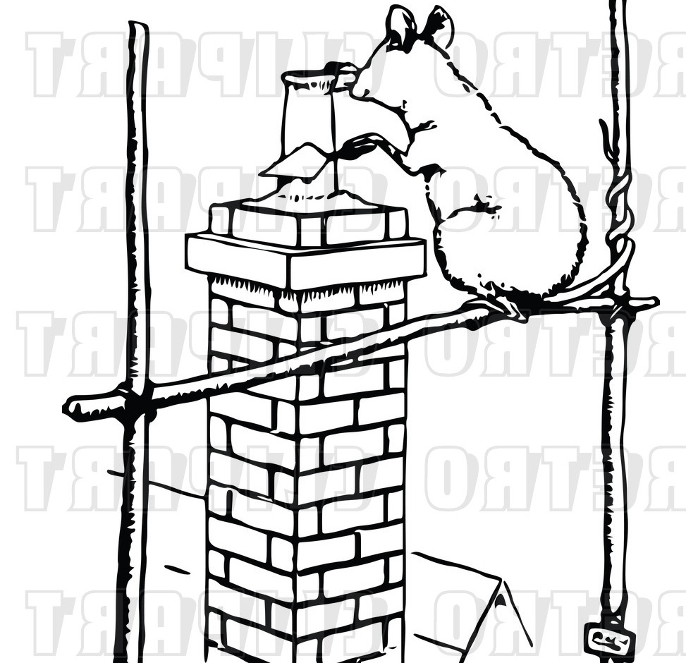 Displaying 20> Images For - Rats Clipart Black And White...