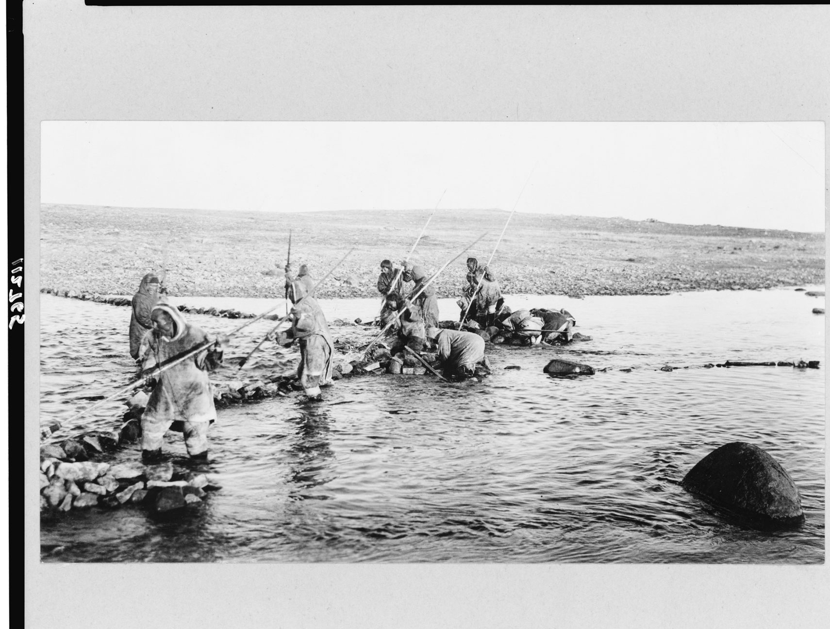 Inuit hunters spear fish for salmon in a river in the early 1900's ...